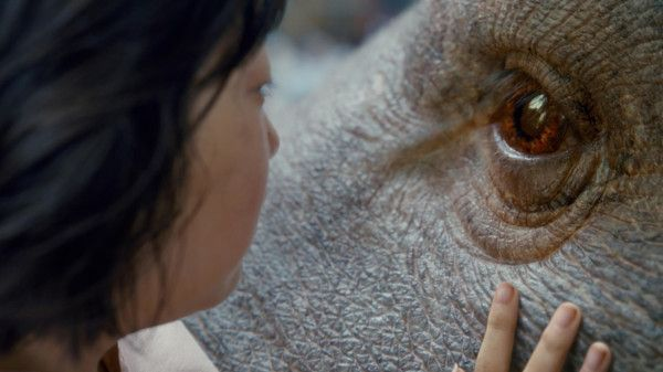 Last year, trouble brewed over Okja's inclusion in competition