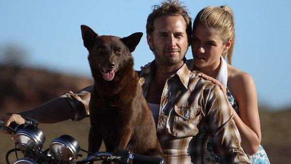 Vanno In Red Dog Movie