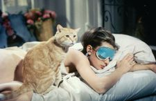 Cat and Holly Golightly (Audrey Hepburn)