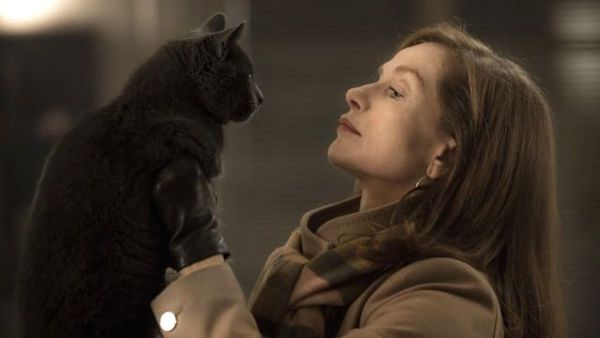 Isabelle Huppert and the feline star of Elle: 'The cat was right there in the opening scene and those eyes in close-up might even have been a symbol of Verhoeven watching the scene. He was so well-trained and he did 12 takes perfectly'