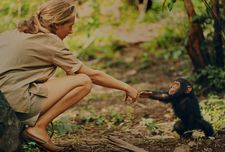 Jane Goodall with Flint in Tanzania's Gombe Stream National Park