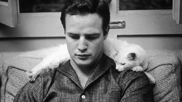 "Stevan Riley's look at Marlon Brando in Listen to Me Marlon: ""Art was often paralleling his life. Guys and Dolls reflected his need for levity."""
