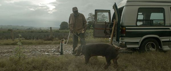 Danny Glover in Mr. Pig - on a mission to sell his last remaining prize hog and reunite with old friends, an aging farmer abandons his foreclosed farm and journeys to Mexico. After smuggling in the hog, his estranged daughter shows up, forcing them to face their past and embark on an adventurous road trip together.