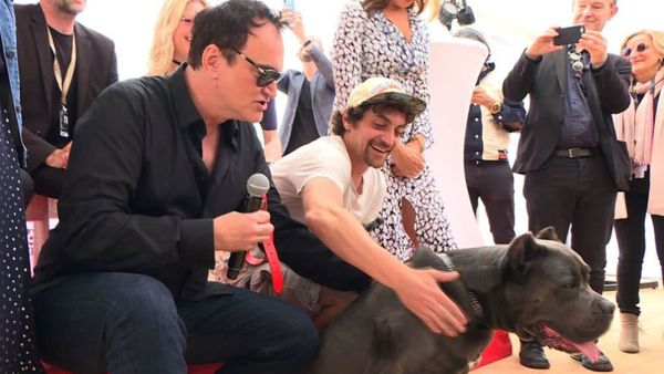 Quentin Tarantino at the Palm Dog awards with a pitbull lookalike in place of Brandy