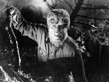 Lon Chaney Jr as The Wolf Man