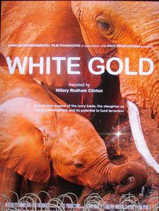 White Gold US poster
