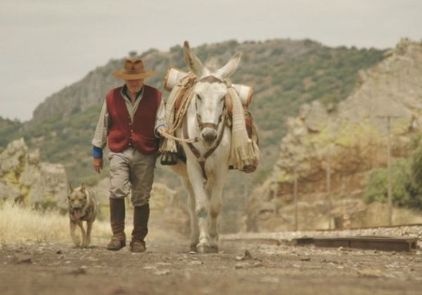 Donkeyote will screen at the festival and feature a Q&A with director Chico Peirera