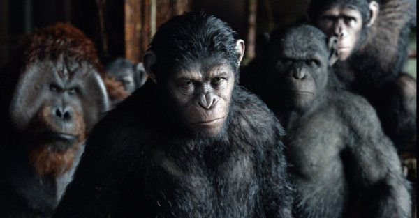 Dawn Of The Planet Of The Apes 2014 Movie Review From Eye For Film