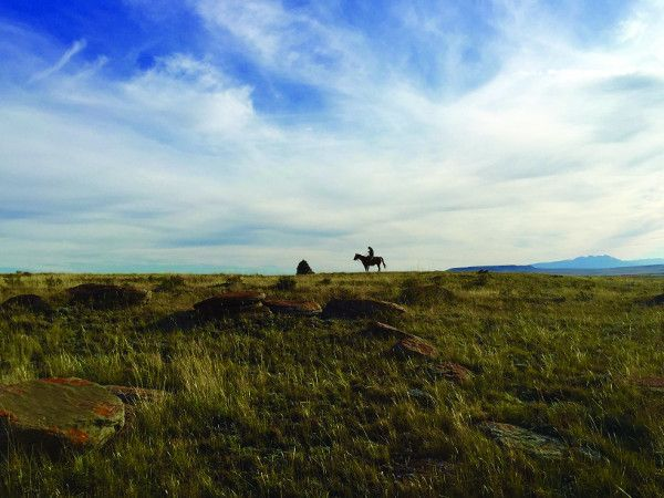 Rancher, Farmer, Fisherman - from the Montana Rockies to the wheat fields of Kansas and the Gulf of Mexico, families who work the land and sea are crossing political divides to find unexpected ways to protect the natural resources vital to their livelihoods. These are the new heroes of conservation, deep in America's heartland.