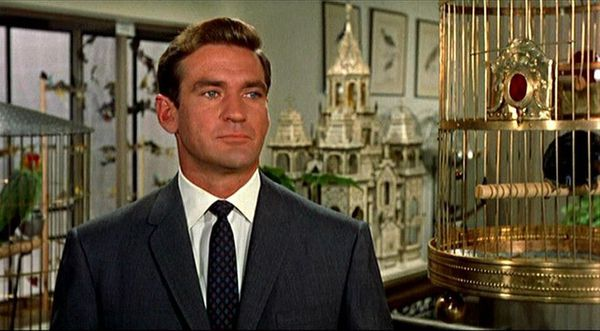 Rod Taylor in Alfred Hitchcock's The Birds