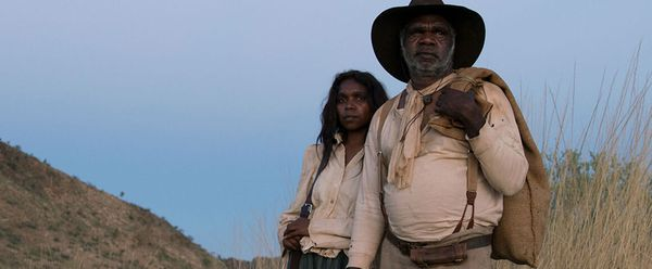 Sweet Country, screening on Thursday