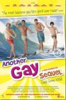Another Gay Sequel: Gays Gone Wild packshot