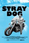Stray Dog packshot